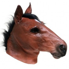 Realistic Brown Horse