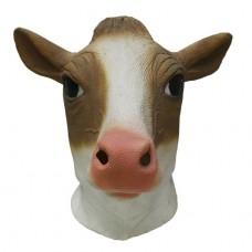 Brown / White Milk Cow