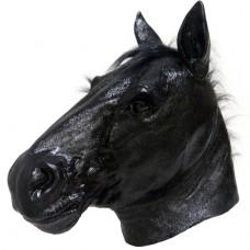 Realistic Black Horse