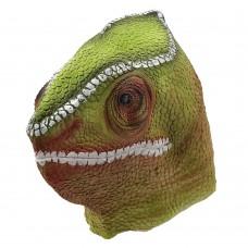 Chaemelon Lizard